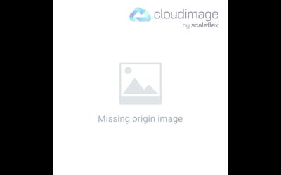 Lament (Psalm 13)