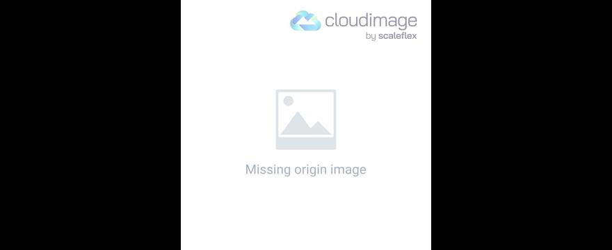 Mission Ontario 1995