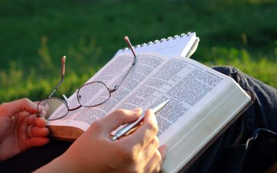 Reinvigorate Your Bible Reading